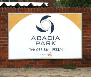 acacia_big8