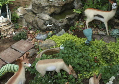 jakaranda_park_garden_1
